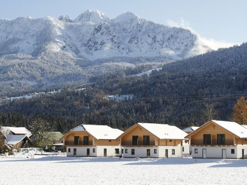 Chalet Clofers Relax Residences Rattendorf 4-persoons chalet - 4 personen