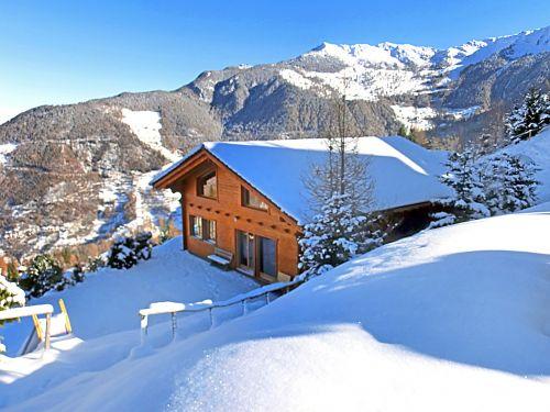 Chalet Alpina - 10-12 personen